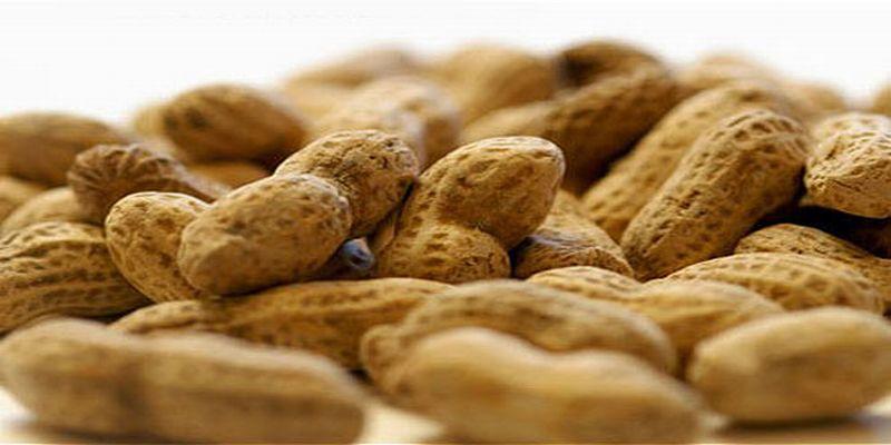https: img-z.okeinfo.net content 2015 07 15 481 1182073 lima-makanan-pemicu-alergi-u4kZLiPTo6.jpg