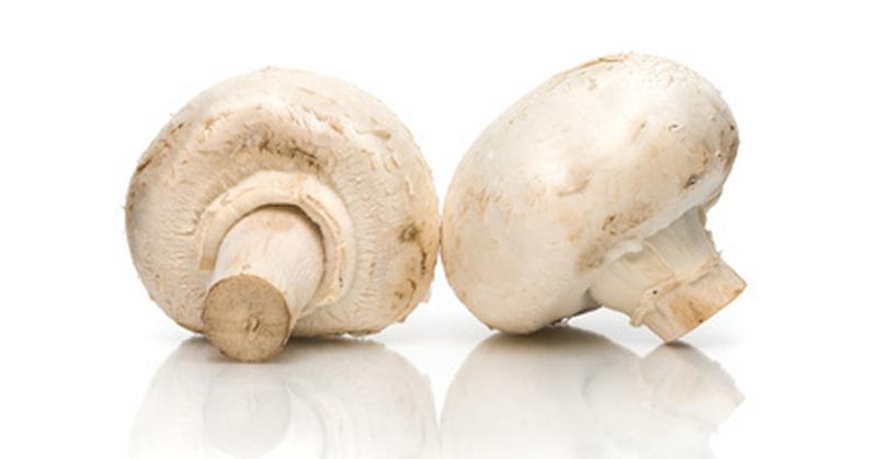 Image result for daging dan jamur