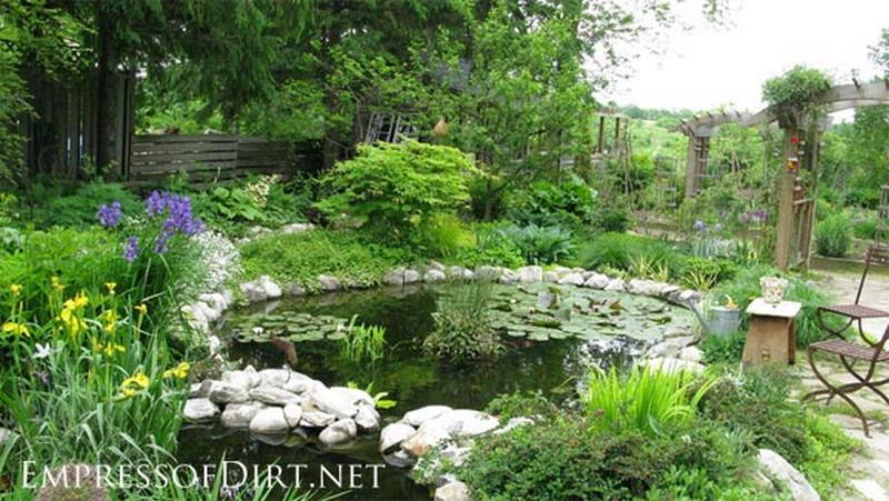 Aquatic Habitat Koi Pond Design Build