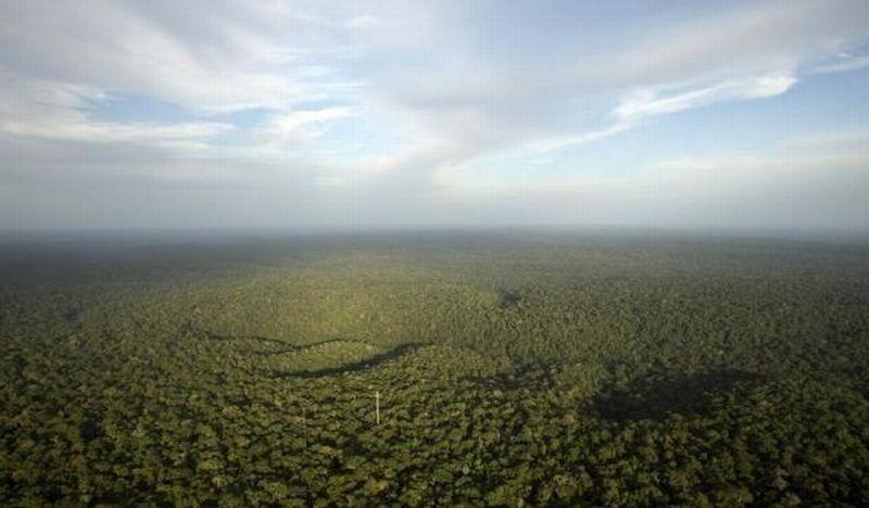 https: img-z.okeinfo.net content 2017 04 18 470 1670257 wah-4-1-juta-ha-kawasan-hutan-untuk-reforma-agraria-ETgVaKAPVR.jpg