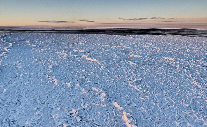 https: img-z.okeinfo.net content 2017 05 09 56 1687380 waduh-ada-batuan-kulit-naga-di-antartika-eWExeyl2ml.jpg