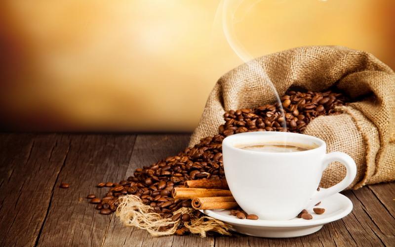https img z.okeinfo.net content 2017 05 18 298 1694234 minum kopi di kafe ini anda akan dihibur tikus hidup QWtuqt0KPm.jpg