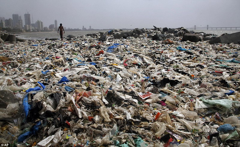 https: img-z.okeinfo.net content 2017 06 01 406 1705499 pantai-di-india-ini-kembali-indah-setelah-5-000-ton-sampah-dibuang-BVvKLMgqWI.jpg