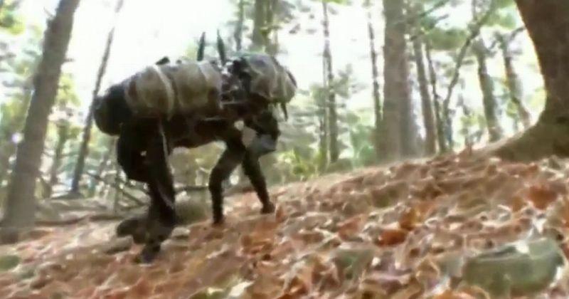 https: img-z.okeinfo.net content 2017 06 15 56 1717271 robot-ini-bisa-bantu-untuk-misi-penyelamatan-cyUuvMW8DS.jpg