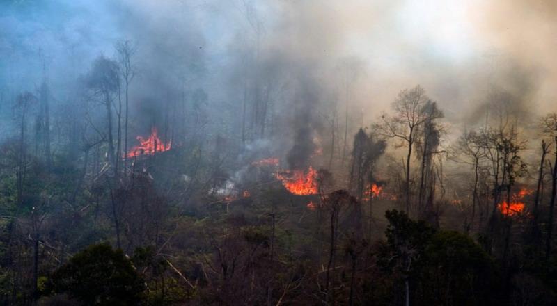 https: img-z.okeinfo.net content 2017 07 04 340 1728413 polisi-buru-pembakar-puluhan-hektare-lahan-gambut-di-aceh-barat-7NWvIByvE7.jpg