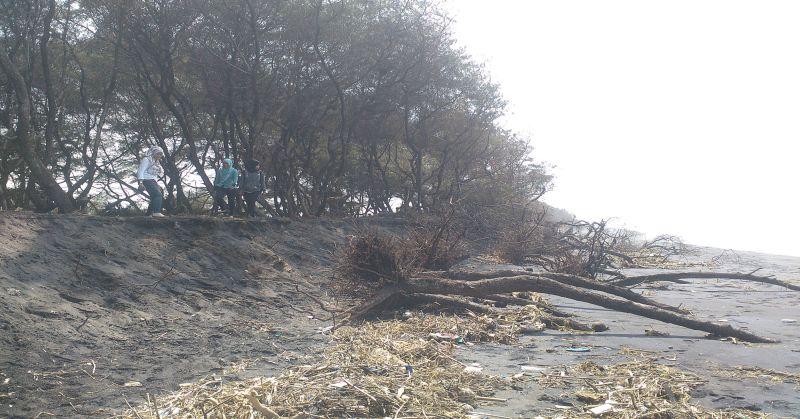 https: img-z.okeinfo.net content 2017 07 17 340 1737855 duh-masyarakat-khawatir-pantai-ujung-pandaran-tinggal-kenangan-QTGp2N6j58.jpg