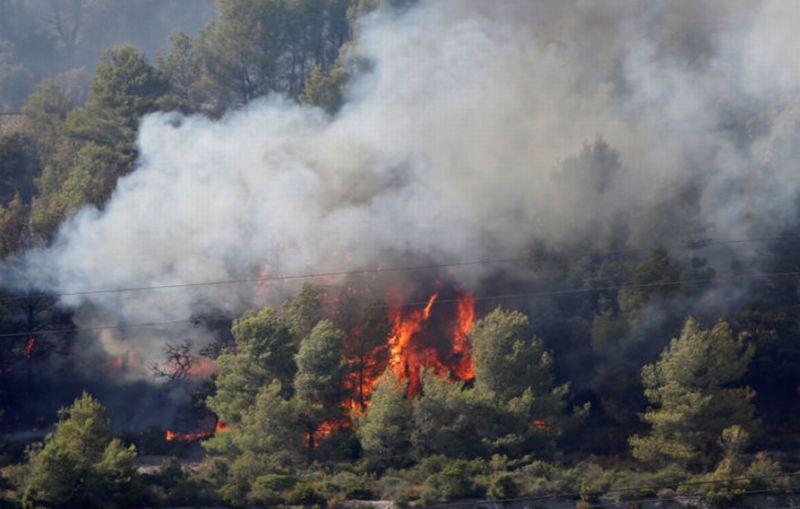 https: img-z.okeinfo.net content 2017 07 26 18 1743987 duh-kebakaran-hutan-prancis-hanguskan-ribuan-hektar-lahan-dan-tempat-wisata-3yyDI44ROC.jpg