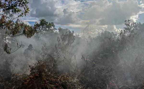 https: img-z.okeinfo.net content 2017 08 13 340 1754950 ciptakan-efek-jera-970-hektare-lahan-terbakar-di-riau-dipasang-garis-polisi-MCdPZJmyeZ.jpg