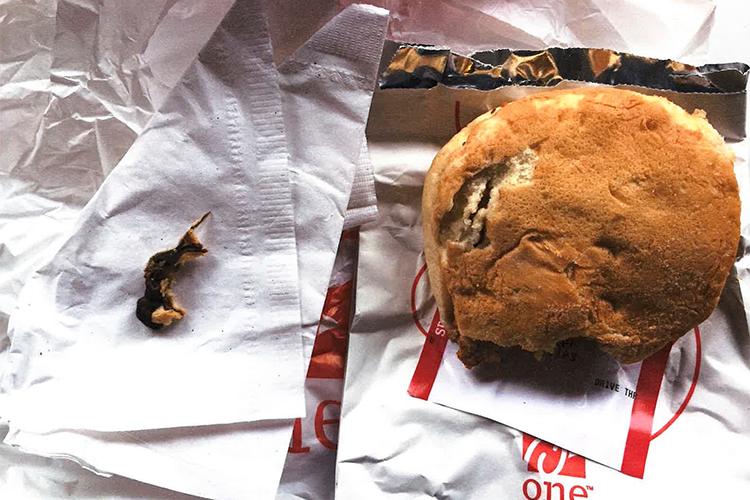 https: img-z.okeinfo.net content 2017 08 16 298 1757162 ya-ampun-sedang-asyik-makan-sandwich-perempuan-ini-temukan-tikus-mati-di-dalamnya-Foe1aOjPYQ.jpg