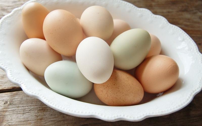 https: img-z.okeinfo.net content 2017 09 11 298 1773706 ketahui-perbedaan-antara-telur-ayam-berwarna-coklat-dan-putih-bFaAb7FJfV.JPG