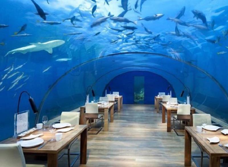https img z.okeinfo.net content 2017 09 13 298 1775361 segera kunjungi restoran di bawah laut ini sebelum hancur karena kondisi ekstrem PW3PPfTfNW.png