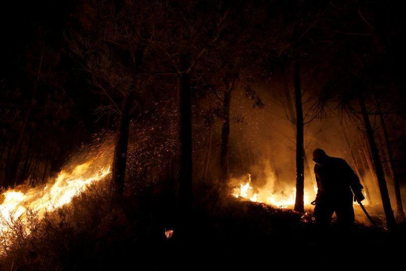 https: img-z.okeinfo.net content 2017 10 18 18 1797513 bayi-1-bulan-jadi-korban-kebakaran-di-portugal-lebih-dari-40-orang-tewas-B5LoIF0CDr.jpg