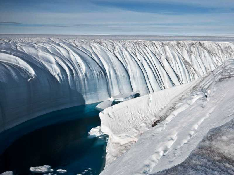 https: img-z.okeinfo.net content 2017 11 12 56 1812578 wow-fosil-berusia-260-juta-tahun-ungkapkan-bahwa-antartika-punya-hutan-AkF8Usg67H.jpg