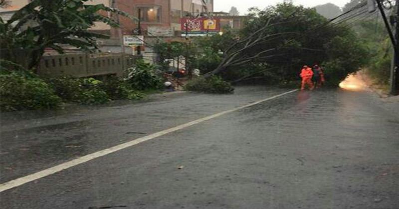 https: img-z.okeinfo.net content 2017 11 13 338 1813185 jakarta-duguyur-hujan-pohon-tumbang-di-kebayoran-lama-o4A4uMrzK5.jpg