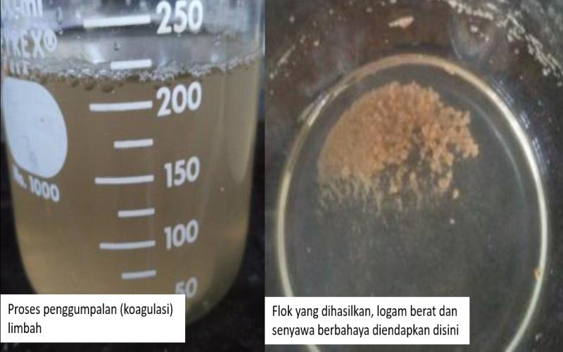 https: img-z.okeinfo.net content 2017 11 14 65 1813885 wow-mahasiswa-gunakan-biji-asam-jawa-untuk-olah-limbah-logam-emas-zrcO4YUfWh.png