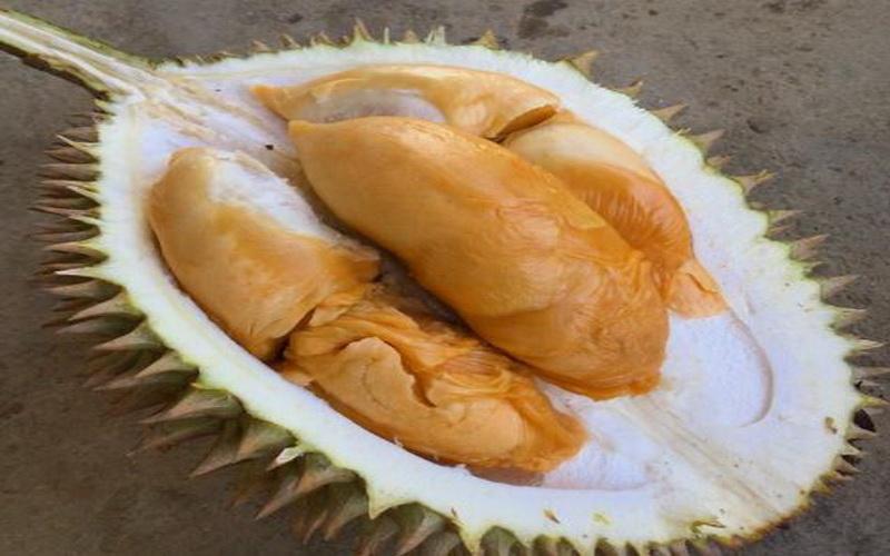 https: img-z.okeinfo.net content 2018 01 04 298 1839868 nikmatnya-durian-dan-lempok-bumi-sebalo-yang-murah-meriah-0PS6bxyPxR.JPG