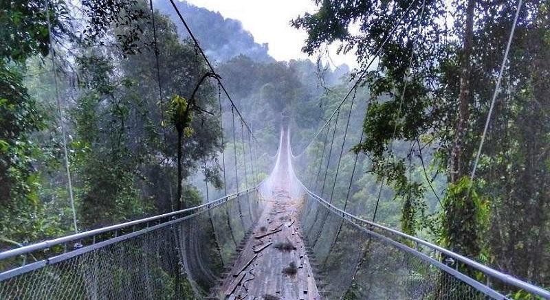 https: img-z.okeinfo.net content 2018 01 09 406 1842613 sukabumi-bangun-jembatan-gantung-terpanjang-dan-tertinggi-di-jawa-barat-YeycKuW3kV.jpg