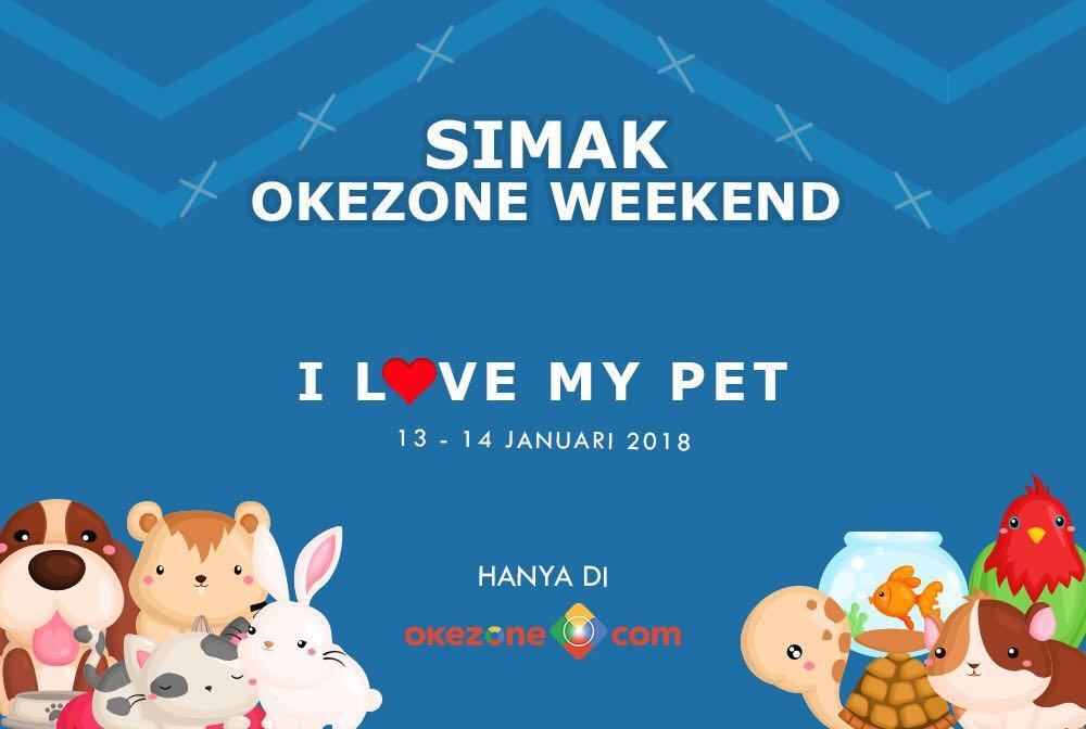 https: img-z.okeinfo.net content 2018 01 12 196 1844311 intip-perawatan-mahal-hewan-kesayangan-selebriti-hingga-kisah-haru-pertemanan-hewan-di-okezone-weekend-dvHqm02vb8.jpg