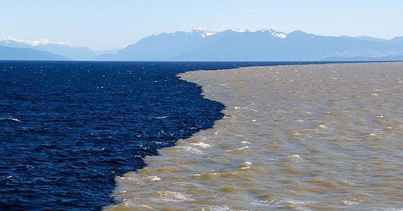 https: img-z.okeinfo.net content 2018 03 01 56 1866669 ada-dinding-yang-menghalangi-tercampurnya-air-laut-dan-air-tawar-r036Iofr7J.jpg