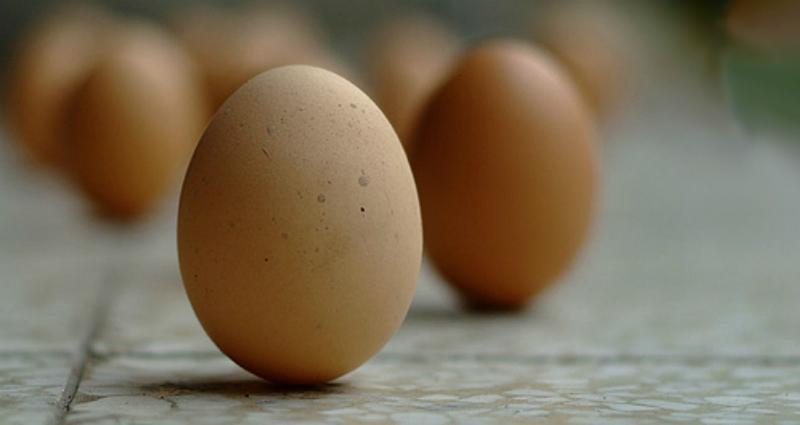 https: img-z.okeinfo.net content 2018 03 21 56 1875860 telur-berdiri-tegak-saat-hari-tanpa-bayangan-mitos-atau-fakta-WxjPJpnBn6.jpg