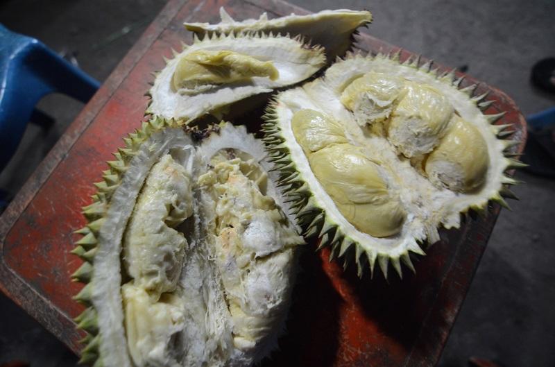 https: img-z.okeinfo.net content 2018 04 02 298 1881124 mencicipi-durian-tanam-kayu-si-kuning-emas-yang-gurih-dan-lezat-zIqroE4JXJ.jpg