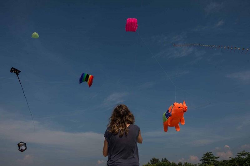 https: img-z.okeinfo.net content 2018 05 15 406 1898509 pelayang-dari-6-negara-terbangkan-puluhan-layang-layang-dalam-rhino-kites-festival-wq6RXQK6X0.jpg