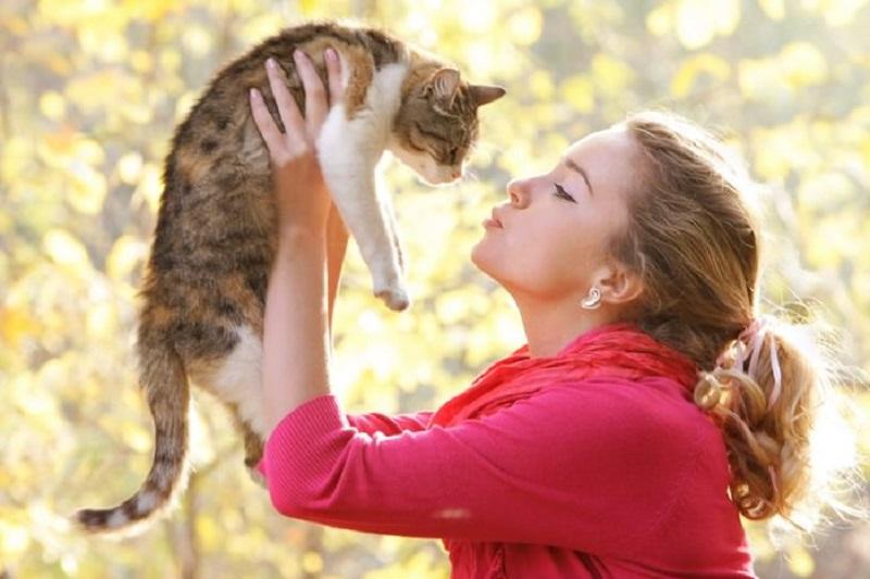 https: img-z.okeinfo.net content 2018 05 17 481 1899596 hobi-pelihara-kucing-ini-5-manfaatnya-bagi-kesehatan-anda-1xIWg8Ys70.jpeg