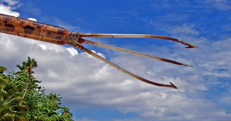https: img-z.okeinfo.net content 2018 05 21 406 1900764 mengenal-kalawai-senjata-tradisional-khas-papua-untuk-berburu-ikan-4UWjL952Le.jpg