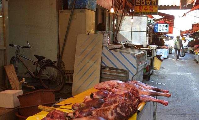 https: img-z.okeinfo.net content 2018 06 22 406 1912661 korea-selatan-larang-konsumsi-daging-anjing-eykftOJqlA.jpg