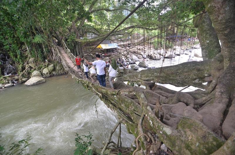 https: img-z.okeinfo.net content 2018 06 26 406 1914211 jembatan-akar-berumur-102-tahun-nan-memikat-di-pesisir-38hWnNZtKq.jpg