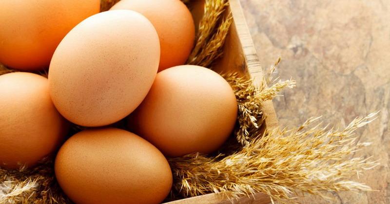 https: img-z.okeinfo.net content 2018 07 04 481 1917640 tidak-rugi-makan-telur-setiap-hari-ini-5-manfaat-sehatnya-8U78ah60Hn.jpg