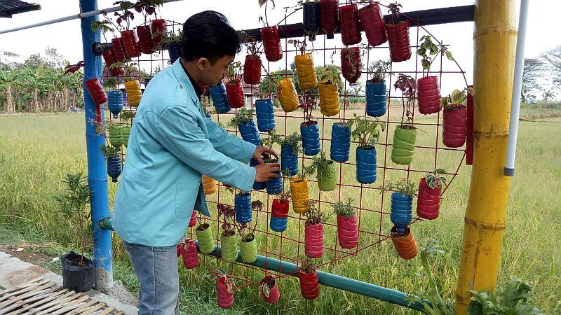 https: img-z.okeinfo.net content 2018 07 04 65 1917700 vertical-garden-solusi-pertanian-di-lahan-sempit-ala-mahasiswa-uns-DWr2ojmMQQ.jpg
