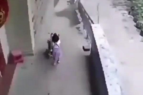 https: img-z.okeinfo.net content 2018 07 11 196 1920912 viral-video-balita-jungkalkan-kereta-dorong-berisi-bayi-orangtua-di-mana-bvZh1aaFgo.jpg