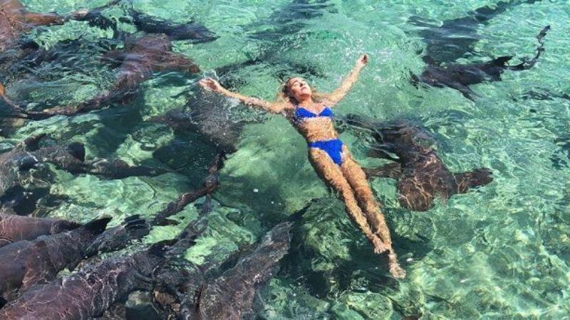 https: img-z.okeinfo.net content 2018 07 12 406 1921368 berlibur-ke-bahama-model-instagram-ini-malah-digigit-hiu-qfcIr5GOUY.jpg