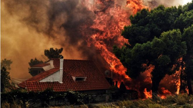 https: img-z.okeinfo.net content 2018 07 24 18 1926620 50-orang-tewas-akibat-kebakaran-hutan-di-yunani-I0ro8Qwjpj.jpg
