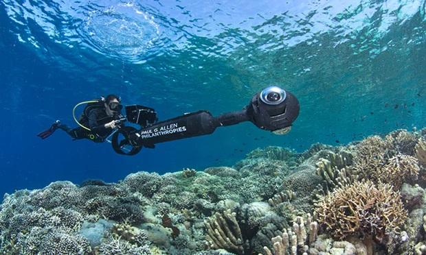 https: img-z.okeinfo.net content 2018 08 14 56 1936513 terumbu-karang-perairan-sulawesi-tahan-pemanasan-global-s5wAZt9kIv.jpg