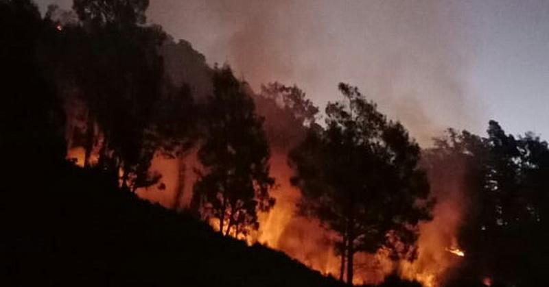 https: img-z.okeinfo.net content 2018 08 18 340 1938275 200-pendaki-dievakuasi-akibat-kebakaran-di-kawasan-gunung-buthak-CIE2m4mxd0.jpg