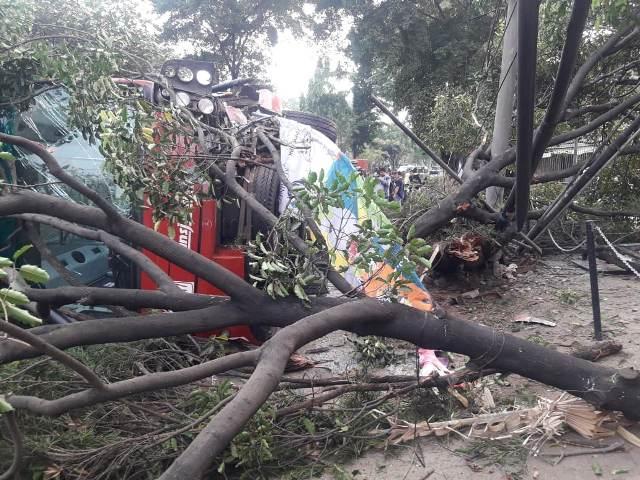 https: img-z.okeinfo.net content 2018 08 26 338 1941543 kronologi-bus-transjakarta-terguling-usai-tabrak-pohon-di-jaksel-kP6Ci8UYGQ.jpg