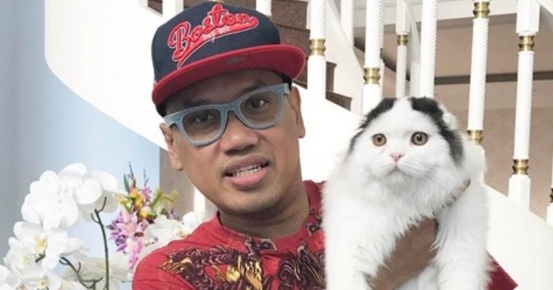 https: img-z.okeinfo.net content 2018 09 14 33 1950430 pecinta-kucing-uya-kuya-rela-habiskan-dana-puluhan-juta-untuk-perawatannya-Ag3KfuUO8l.jpg