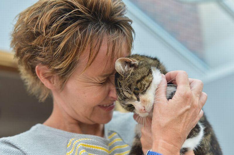 https: img-z.okeinfo.net content 2018 09 24 196 1954870 13-tahun-berpisah-kisah-kucing-bertemu-kembali-dengan-majikannya-bikin-mewek-1c8CT6SXM4.jpg