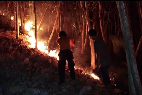https: img-z.okeinfo.net content 2018 10 15 512 1963981 basarnas-pantau-kemungkinan-pendaki-terjebak-di-kebakaran-gunung-merbabu-yRBdSbuseU.jpeg