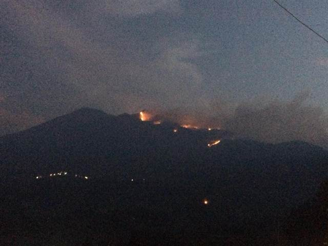 https: img-z.okeinfo.net content 2018 10 16 512 1964933 100-hektare-lahan-di-gunung-merbabu-ludes-terbakar-E68tNc2Ir8.jpeg