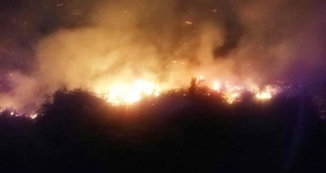 https: img-z.okeinfo.net content 2018 10 26 340 1969103 malam-hari-hutan-1-5-hektar-di-toraja-utara-terbakar-igekweHx40.jpg