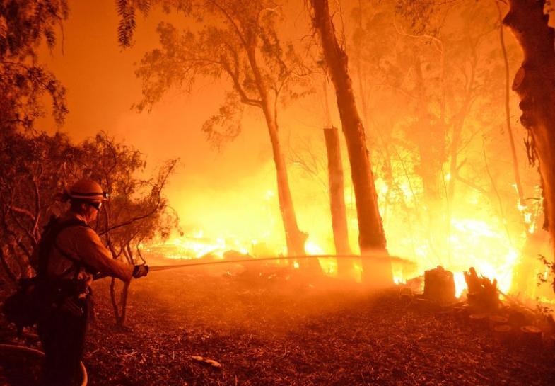 https: img-z.okeinfo.net content 2018 11 11 18 1976258 kebakaran-hutan-california-jumlah-korban-tewas-menjadi-25-orang-5HUujy8yIt.jpg