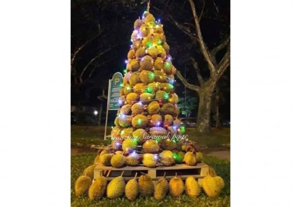 https: img-z.okeinfo.net content 2018 12 26 298 1996323 pohon-natal-durian-hebohkan-malaysia-tingginya-sampai-2-meter-dltZKwN5nY.jpg