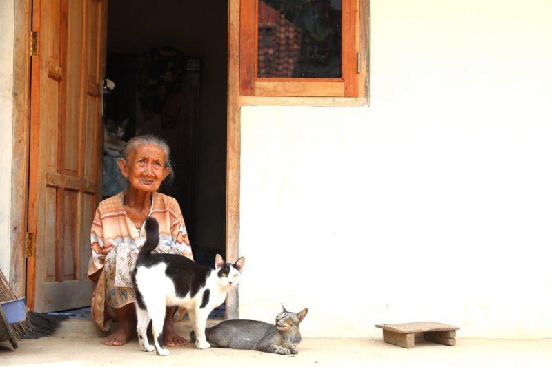 https: img-z.okeinfo.net content 2019 01 11 512 2002859 cerita-haru-mbah-kusnari-dan-5-kucing-yang-punya-rumah-baru-HVbrwcqtXB.jpg