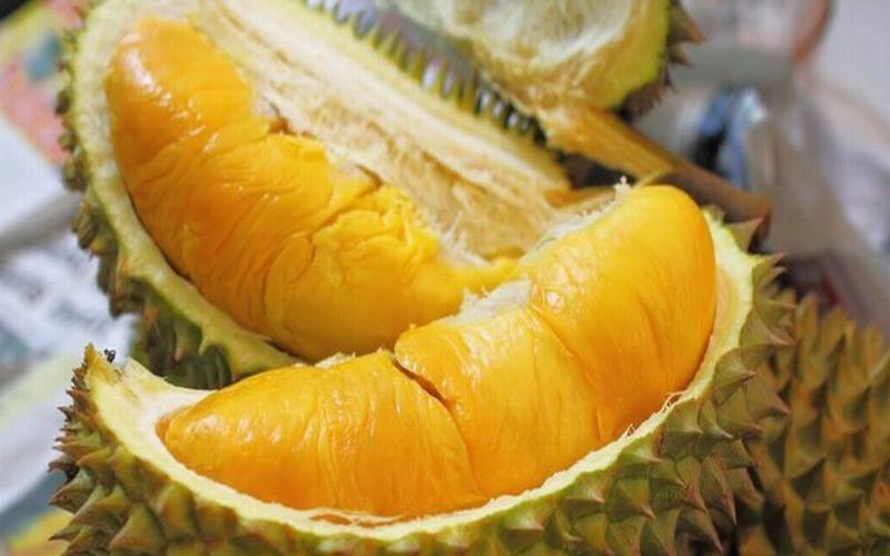 https: img-z.okeinfo.net content 2019 01 18 298 2006477 mengulik-keunikan-durian-setan-asal-aceh-selatan-1UBAhYeIah.jpg