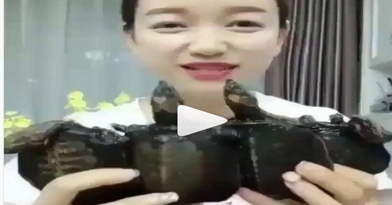 https: img-z.okeinfo.net content 2019 02 04 298 2013648 lihat-perempuan-ini-makan-anak-penyu-netizen-murka-YTLerjdCVZ.jpg