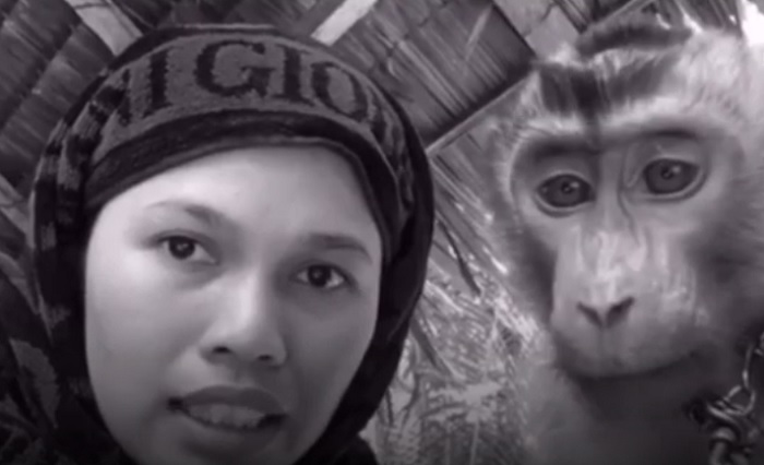 https: img-z.okeinfo.net content 2019 02 11 194 2016587 aksi-kocak-wanita-asal-pekanbaru-perawatan-kecantikan-dokternya-monyet-FWplf2tzki.jpg