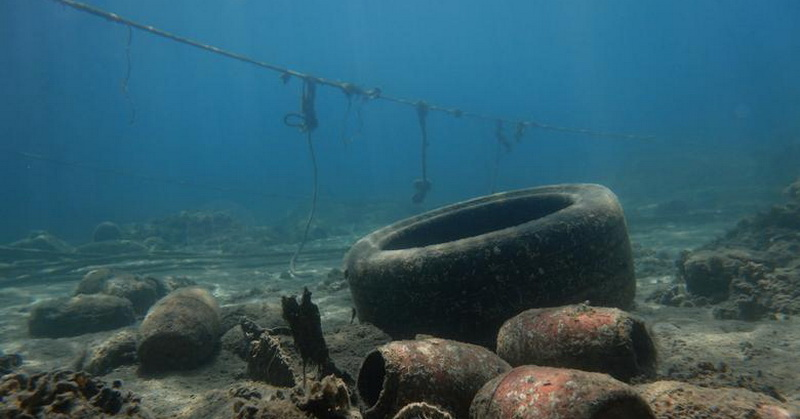 https: img-z.okeinfo.net content 2019 03 01 56 2024696 plastik-ditemukan-dalam-perut-hewan-di-palung-laut-terdalam-1TcuB4FqGz.jpg
